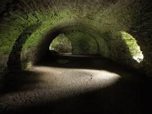 cantine sotterranee FRIGORIFERI SMEG - IL MEGLIO DEL DESIGN ITALIANO E LA SUA PASSIONE PER LA CASA