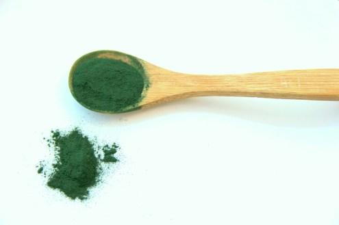 spirulina  viatamine alga IN COSA CONSISTE LA DIETA VEGANA?