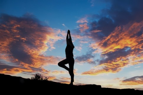 wellness health WHAT IS THE VEGAN DIET?