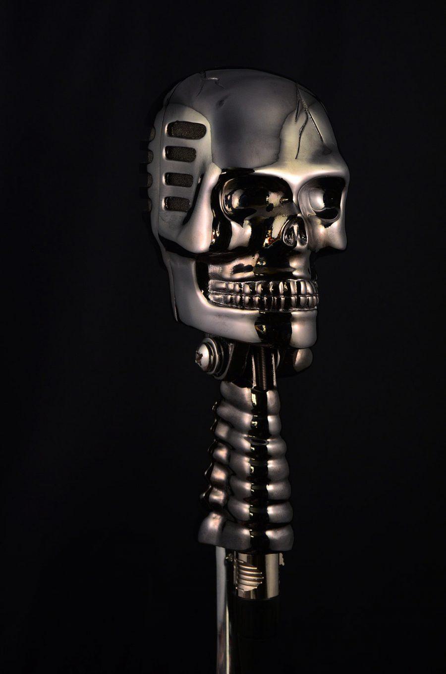 Tom's Selec - micro skull