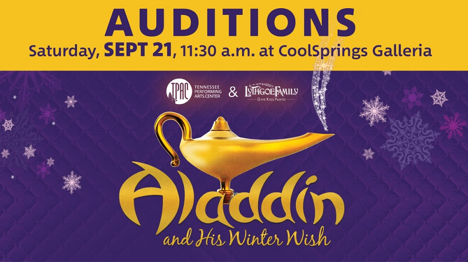 Aladidn Winter Wish Auditions