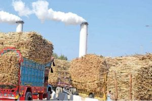 Indian-sugar-industry-Less-sweetness-more-affluence-tpci
