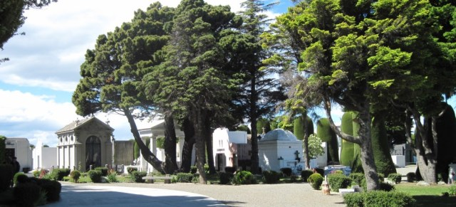 topiary trees and crypts
