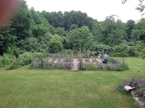 Robert & his garden
