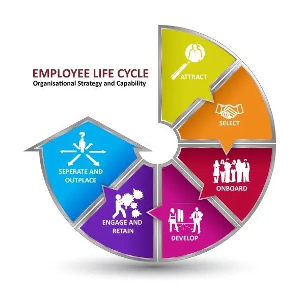 About Our Hr Services Human Resources Training