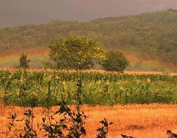 Photo of GDE JOJ MESTO NIJE: Duga ispod brda kod Golupca (FOTO)
