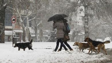 Photo of NAREDNIH DANA JOŠ HLADNIJE: Danas hladno, sa kišom i snegom, do 8 stepeni