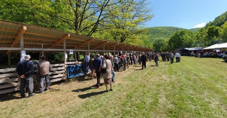 Photo of Održan 14. Sabor bačijara Srbije u Stamnici (FOTO)