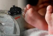 Photo of ŠOK U KUČEVU: Pronađena beba ostavljena u korpi, u kontejneru!