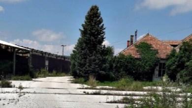 """Photo of ISTA OSOBA U SVIM MALVERZACIJAMA: Kako i ko je uništio industrijski gigant """"ŠIK Kučevo"""""""