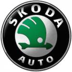 Automatten Skoda