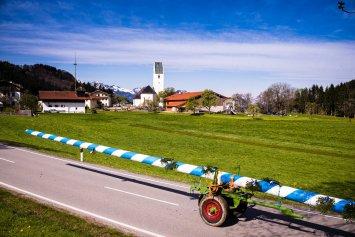 Maibaum-Altenbeuern-1008462