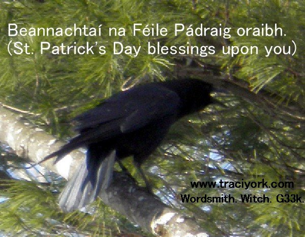 St Paddy's blessing