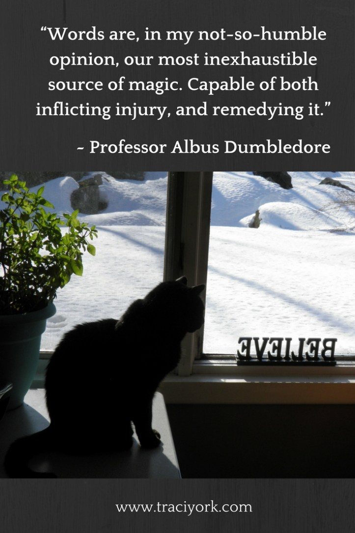 Witch Quote Challenge Week 1 Dumbledore Quote