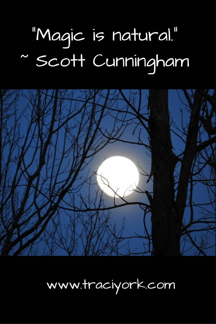 Witch Quote Challenge Week 1 Cunningham Quote