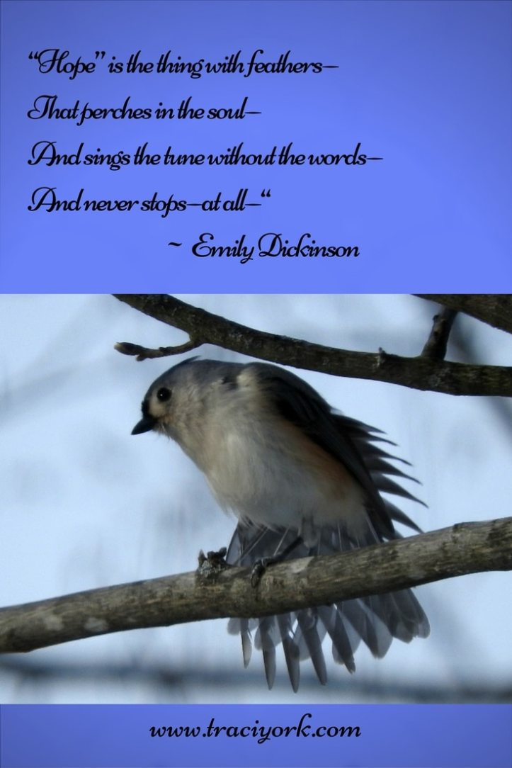 Quote Challenge Week 2 Emily Dickinson