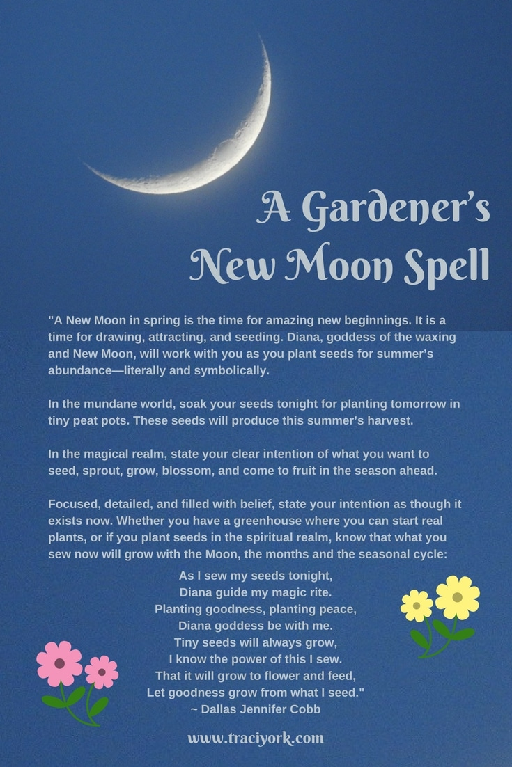 Witch Quote Challenge Week 3 New Moon spell by Jennifer Dallas Cobbs