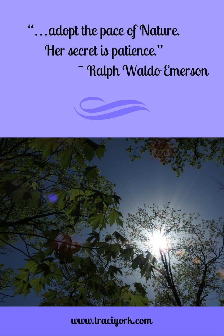 Quote Challenge Week 4 Ralph Waldo Emerson Quote