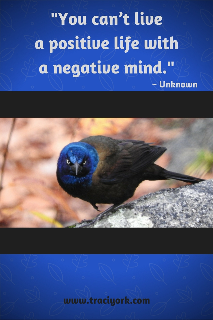 Quote Challenge Week 5 Positive Life Quote