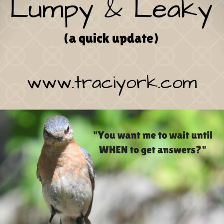 Quick Update on Lumpy and Leaky Blog Graphic
