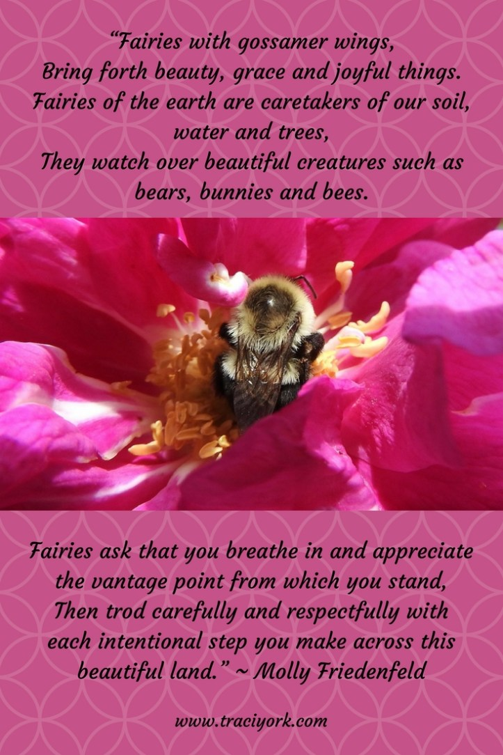 Bee Quotos - Molly Friedenfeld Quote