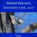 Final Frosty Flashback Foto Friday