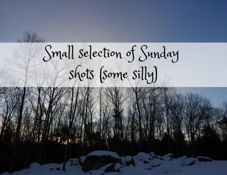 Small selection of Sunday shots