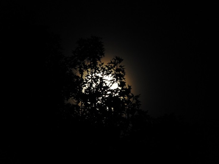 Pictures of the Full Honey Moon in Capricorn, June 26th to the 28th