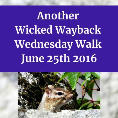 Another Wicked Wayback Wednesday Walk from June 25th 2016 blog thumbnail