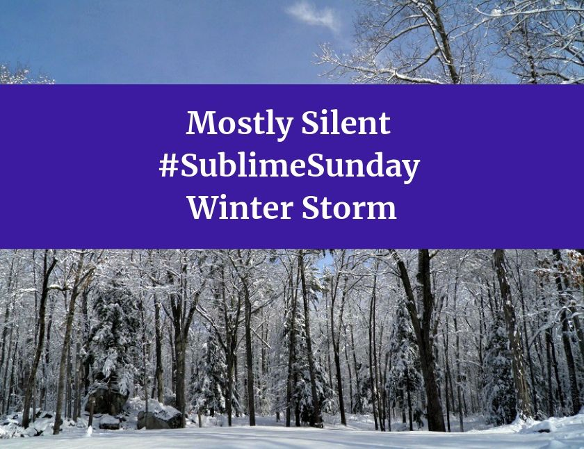 Mostly Silent SublimeSunday Winter Storm blog thumbnail