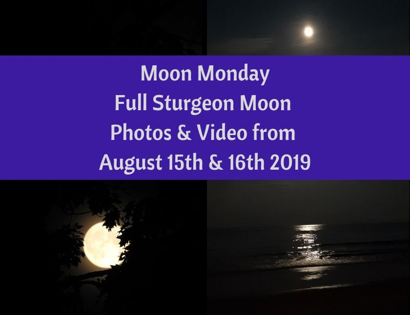 Moon Monday - Full Sturgeon Moon Photos & Video from August 15th & 16th 2019 blog thumbnail
