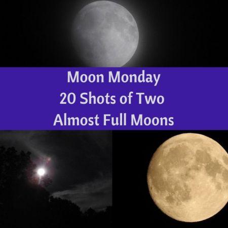 Moon Monday - 20 Shots of Two Almost Full Moons blog thumbnail