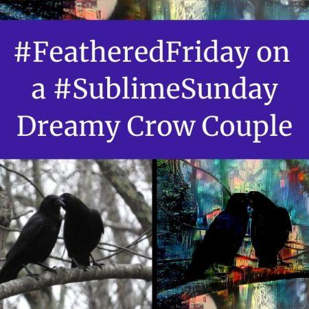 FeatheredFriday on a SublimeSunday – Dreamy Crow Couple blog thumbnail