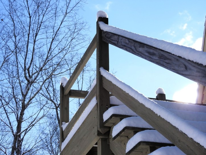 Another week, another snowstorm for a Wednesday Walk December 18th 2019