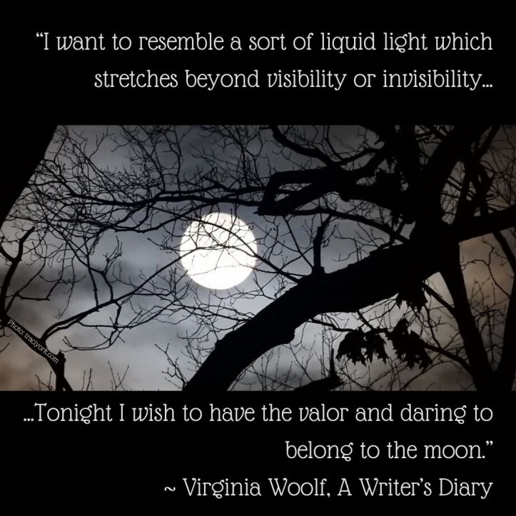 Virginia Woolf liquid light moon quote