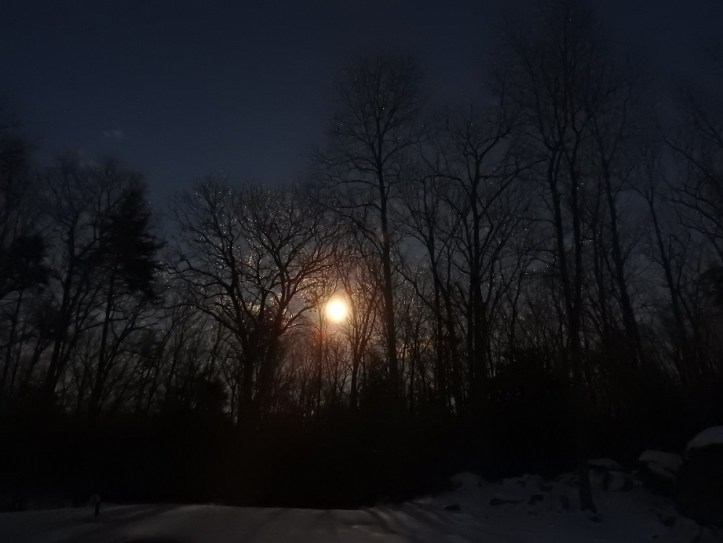 Shots of the Moon