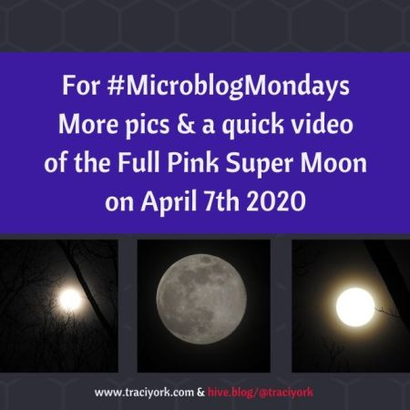For MicroblogMonday More pics & a quick video of the Full Pink Super Moon of the Full Pink Super Moon on April 7th 2020 blog thumbnail