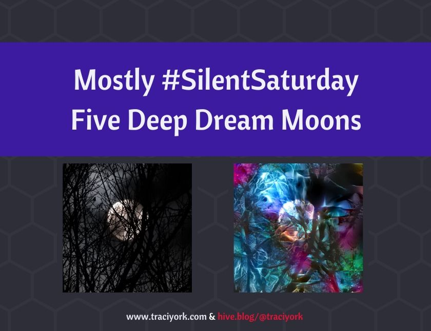 Mostly #SilentSaturday - Five Deep Dream Moons blog thumbnail