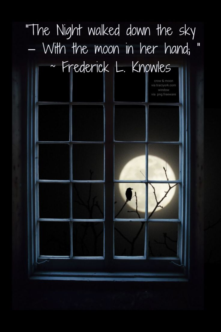 Moon walked down - Quotes with My crow-moon photo with png freeware window