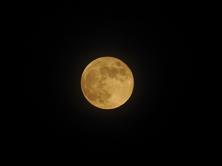 2 June 5th 2020 Full Honey Moon