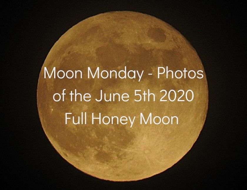 Moon Monday - Photos of the June 5th 2020 Full Honey Moon blog thumbnail