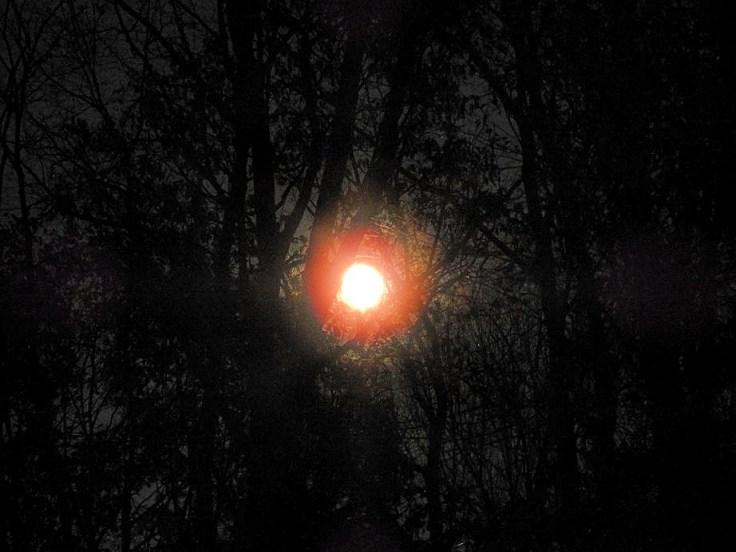 7. Halloween Blue Hunter's Moon