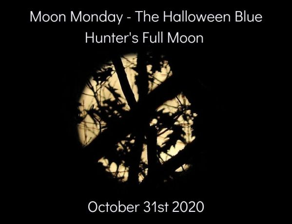 Moon Monday - first set of the Halloween Blue Hunter's Full Moon blog thumbnail