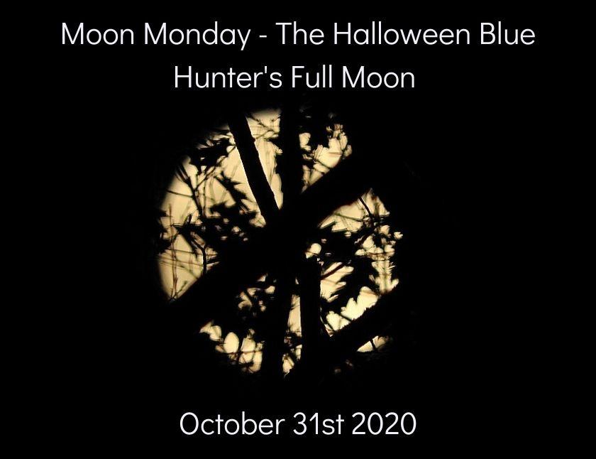 Moon Monday - first set of the Halloween Blue Hunter's Full Moon blog thumbnail