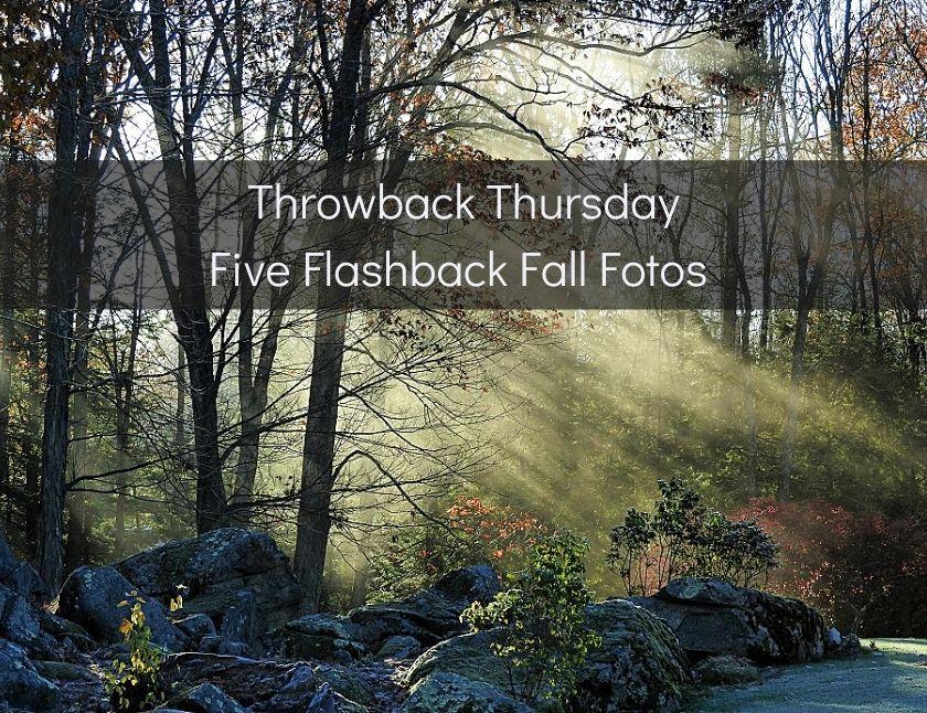 Throwback Thursday Five Flashback Fall Fotos blog thumbnail