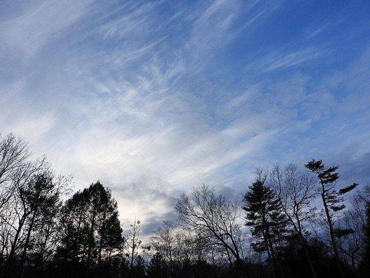 Mostly Wordless Wayback Wednesday - Five Photos from December 2017