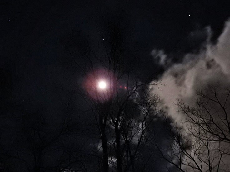 Mostly Full Moon on December 1st 2020