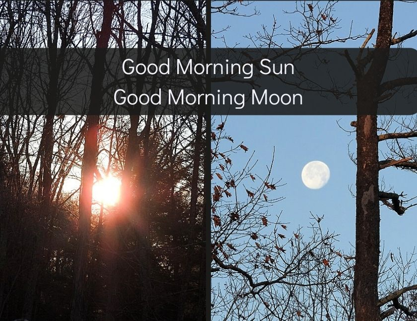 Good Morning Sun, Good Morning Moon blog thumbnail