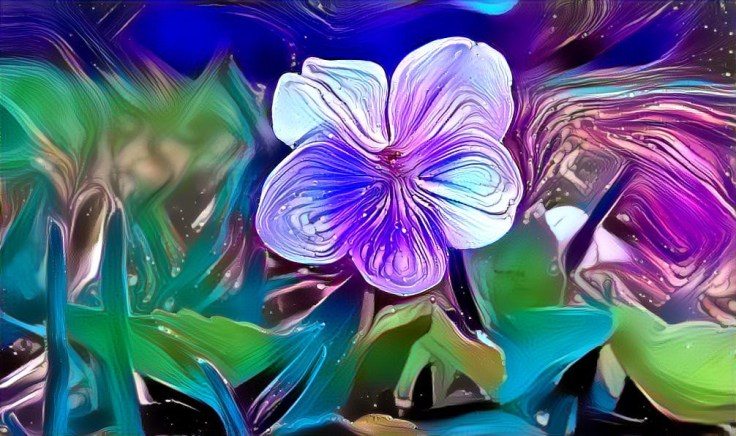 Five Funky Flower Filtered Fotos