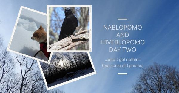 NaBloPoMo and HiveBloPoMo Day Two - and I got nothin' blog thumbnail